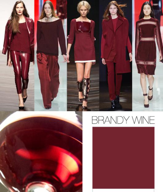 trend-council-fw1415_color-brandy-wine